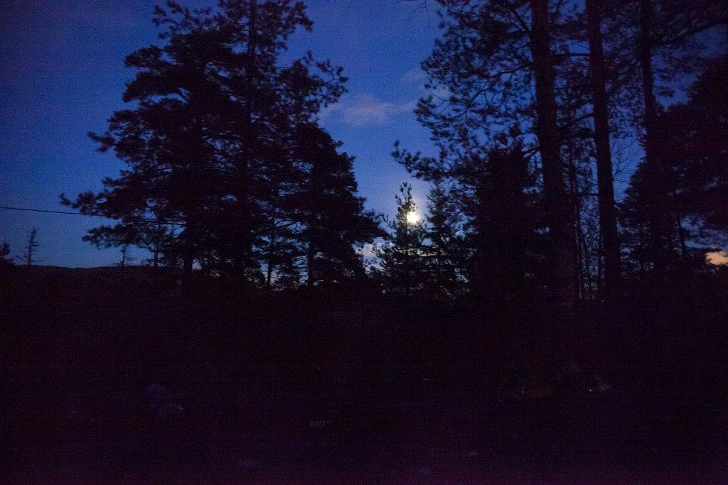 Mustavuori-12102011-006.jpg