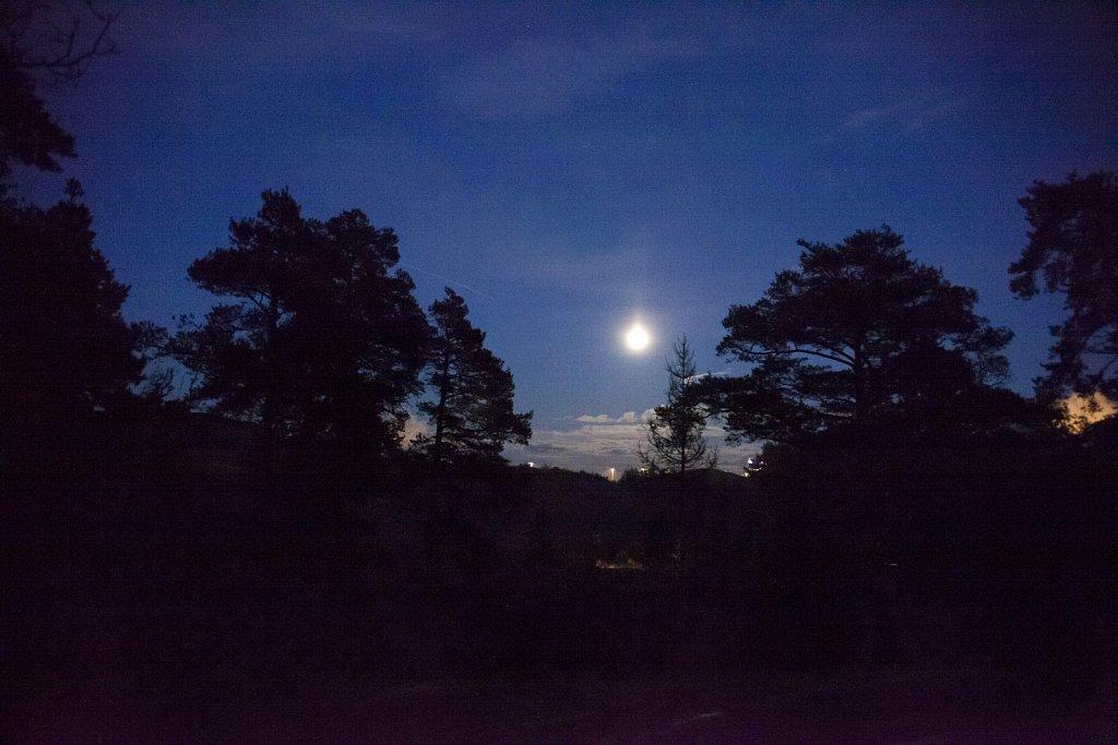 Mustavuori-12102011-015.jpg