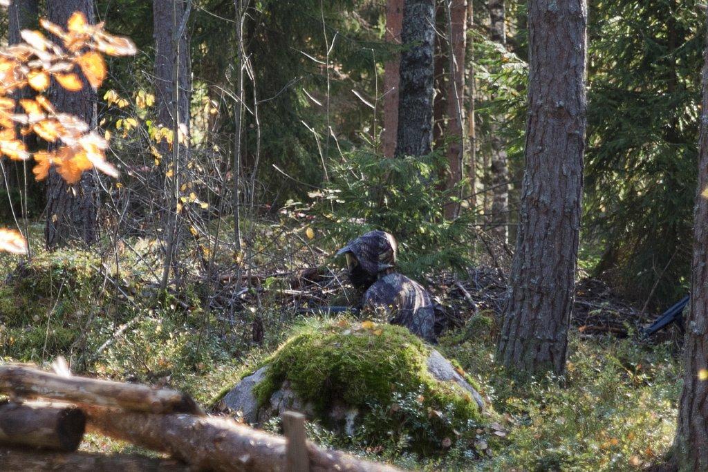 Kuninkaanportti-9102011-010.jpg