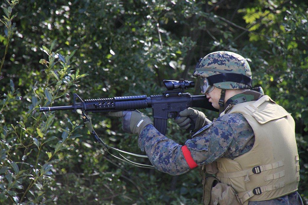 MG-7431.JPG