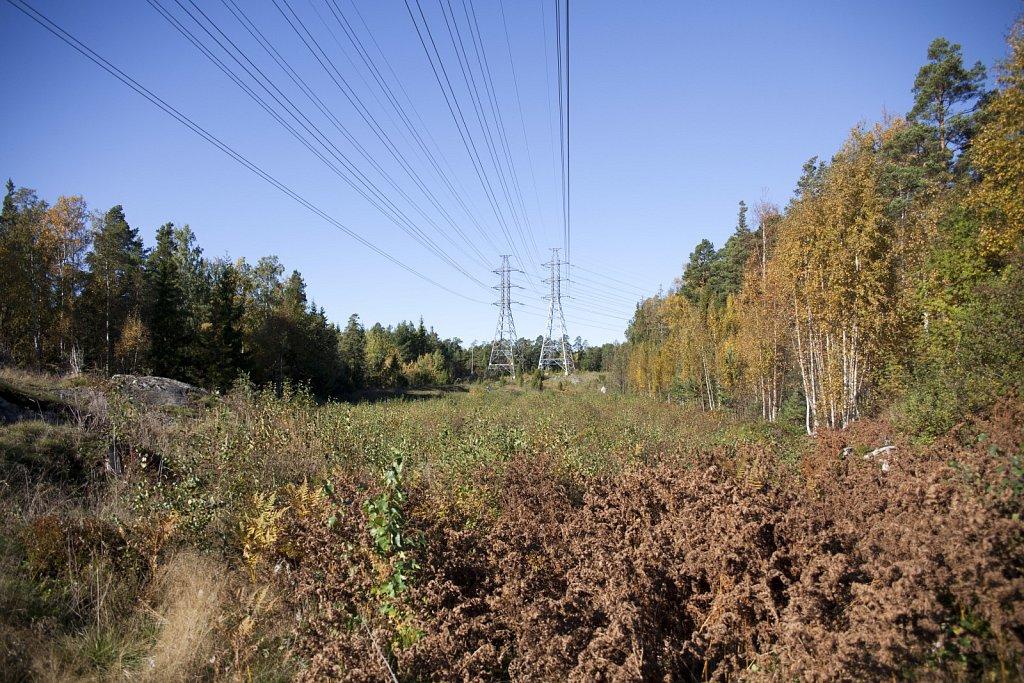 Mustavuori-1102011-003.jpg